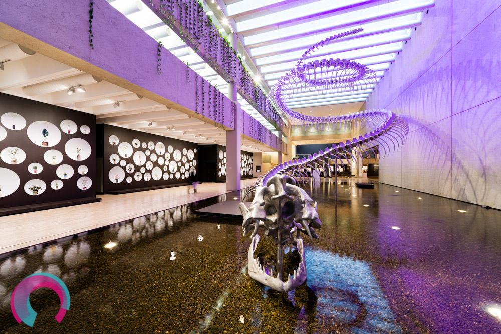 The Queensland Art Gallery - shot by Jen Dainer, Freelance Commercial Photographer, Brisbane