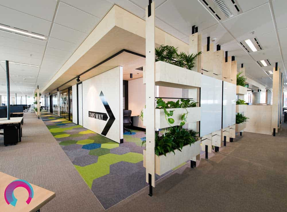 Office fitout showing natural plants as room dividers, bold geometric shaped carpet tiles. Integrating colour and interest into the workplace - commercial office photography Brisbane