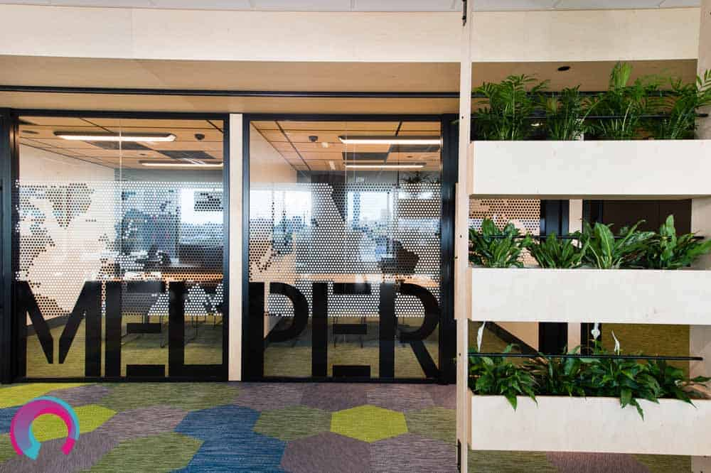 Plants used as a room divider in this commercial office fitout, carpet ties with geometric shapes and strong colours (blue, yellow and green) and glass office walls emblazoned with maps of the world. Plenty of natural light in this office space make it calming to be in, and really exciting to photograph
